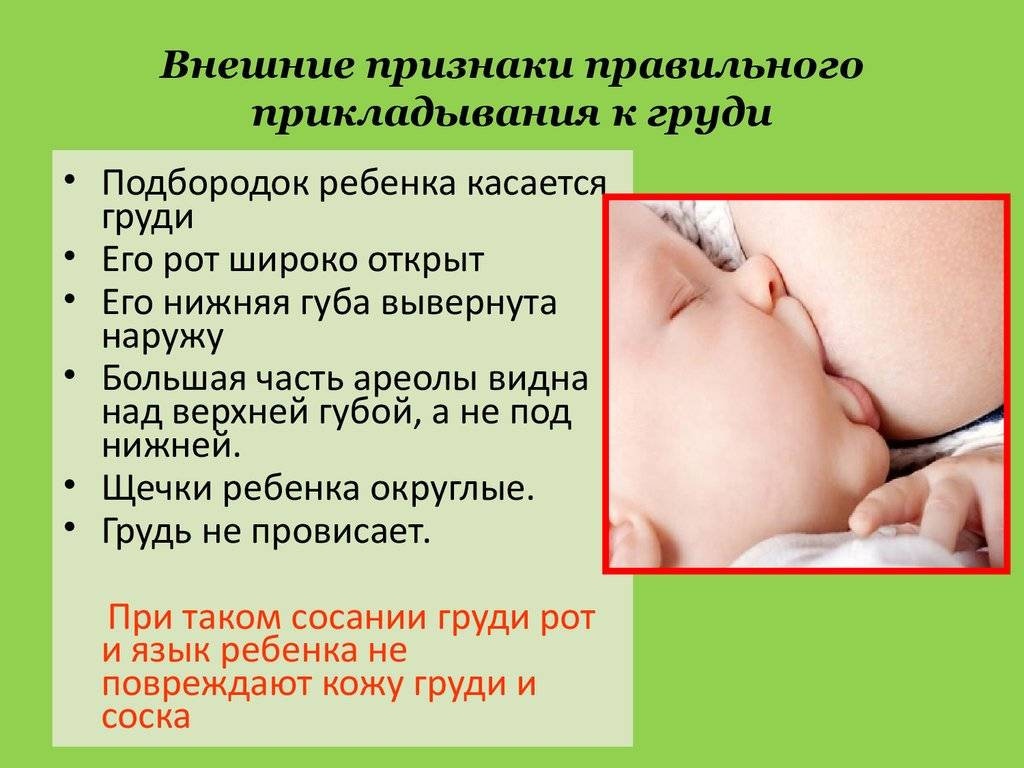 Позы для кормления грудного ребенка (грудью): как правильно кормить