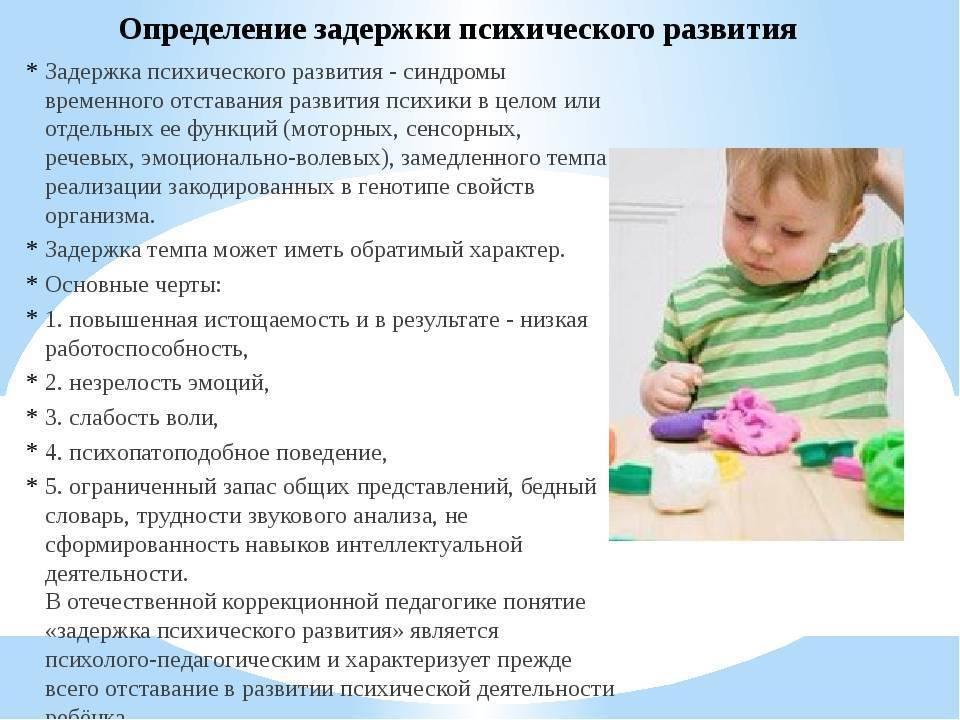 Иппотерапия или дельфинотерапия для детей с задержкой психоречевого развития (зпрр)