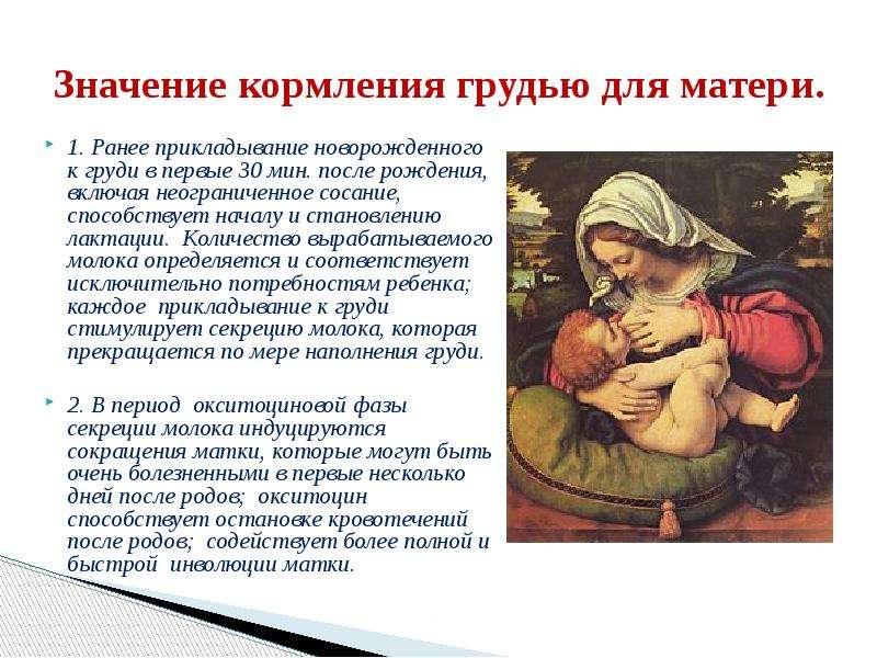 Слива при грудном вскармливании вредна или полезна для матери с малышом?