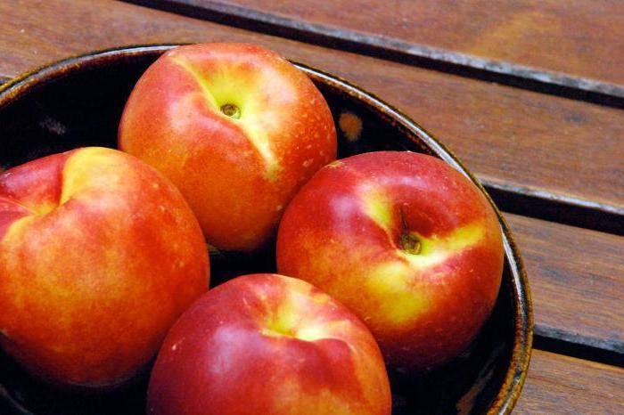 Можно ли персики при грудном вскармливании: кормящей маме в первый месяц лактации