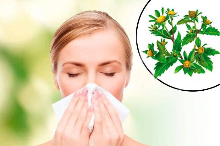 Сезонная аллергия у взрослых - симптомы, причины, профилактика и лечение