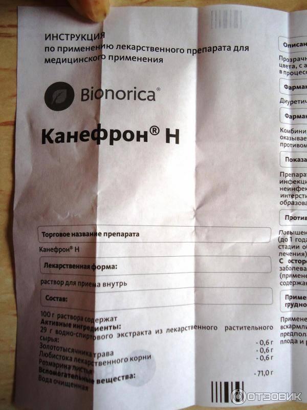Канефрон h раствор для приема внутрь 100 мл   (бионорика ce) - купить в аптеке по цене 501 руб., инструкция по применению, описание, аналоги