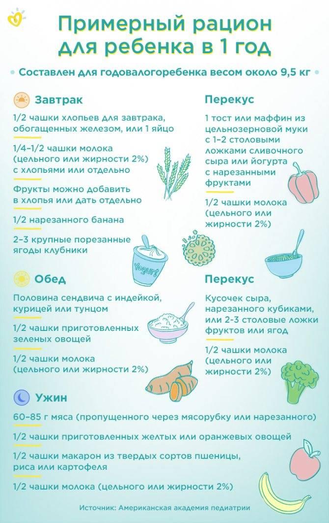 Питание ребенка в 1 год и 4 месяца