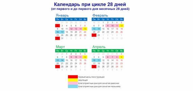 Калькулятор овуляции онлайн для зачатия и календарь: рассчитать для зачатия дни бесплатно, как правильно рассчитать и составить график для оплодотворения, вероятность беременности