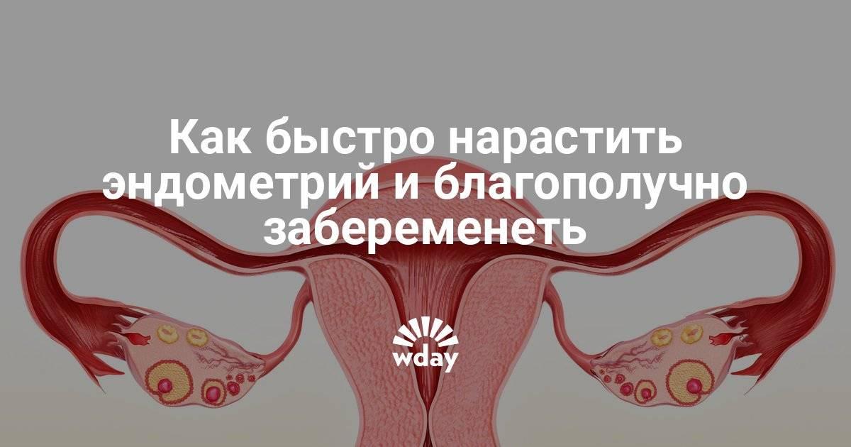 Беременность без маточных труб возможна /// medical plaza
