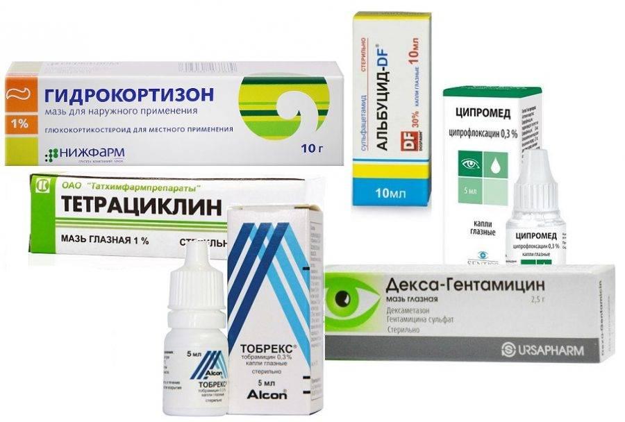 Капли для глаз от блефарита: когда необходимо применение антибиотика? - энциклопедия ochkov.net