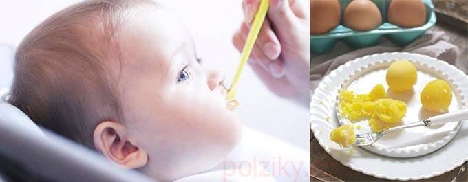 Как ввести яйцо в прикорм ребенку? желток и белок: когда вводить?