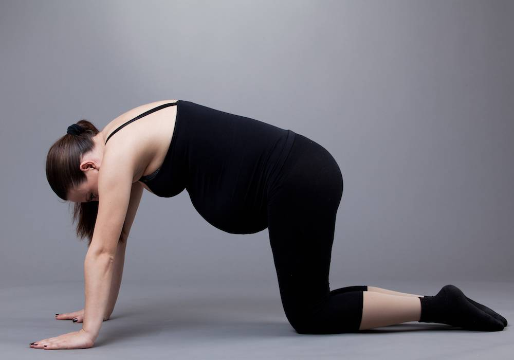"""Упражнение """"кошечка"""" для беременных и другие элементы коленно-локтевой гимнастики: польза занятий для таза при симфизите"""