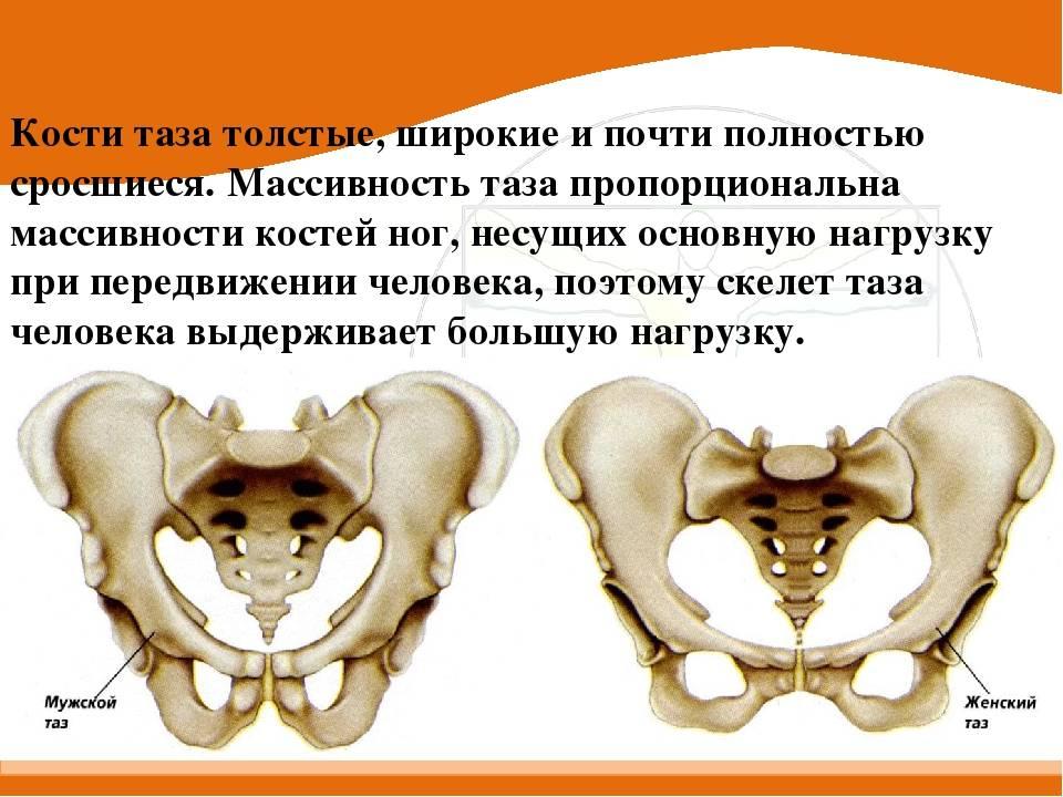 Расхождение костей таза при беременности   «юнона»