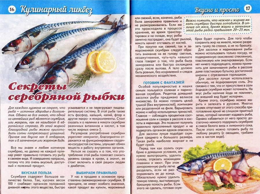 Какую рыбу можно есть при грудном вскармливании