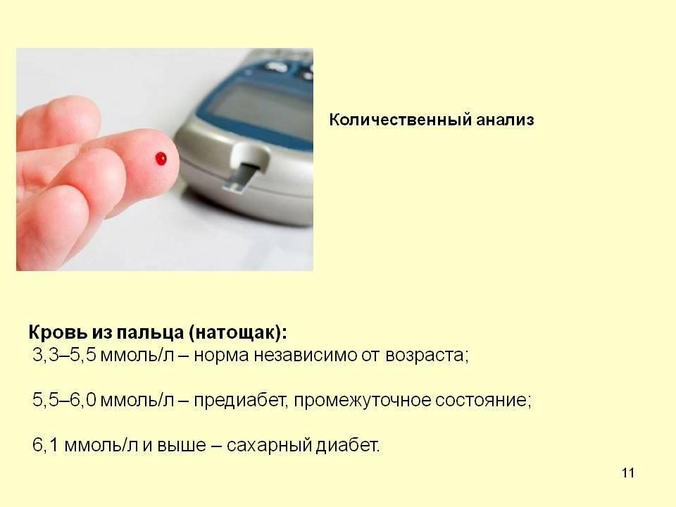 Когда назначают общий анализ крови и как к нему подготовиться - общая медицина