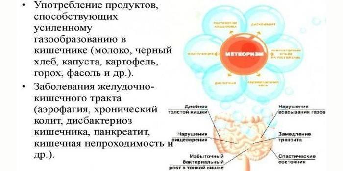 Боли во втором триместре у беременных | что делать, если болит тело во втором триместре? | лечение боли и симптомы болезни на eurolab