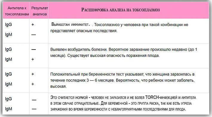 Анализ на токсоплазмоз до и во время беременности