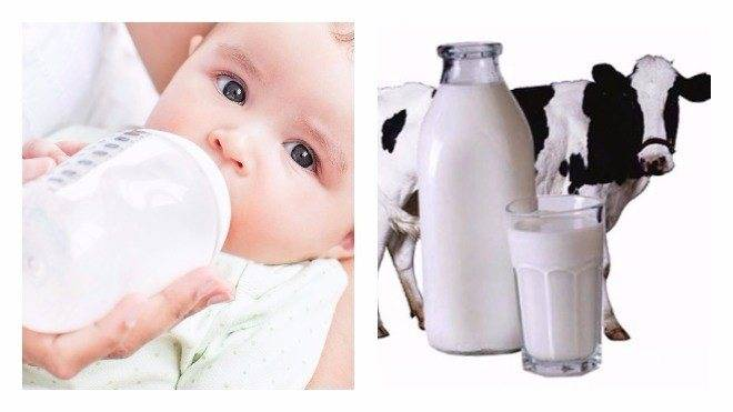 Кисломолочные продукты: ищем пользу для взрослых и детей и находим!
