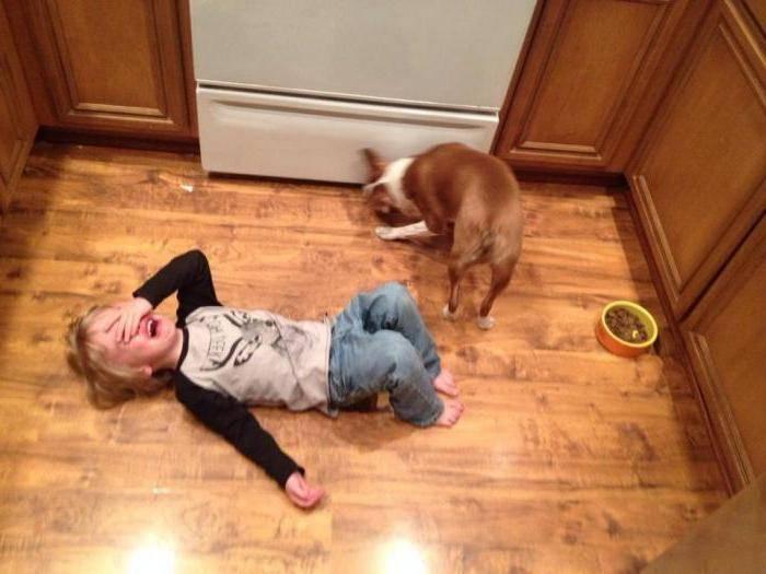 Почему ребенок бьет себя по голове? - страна мам
