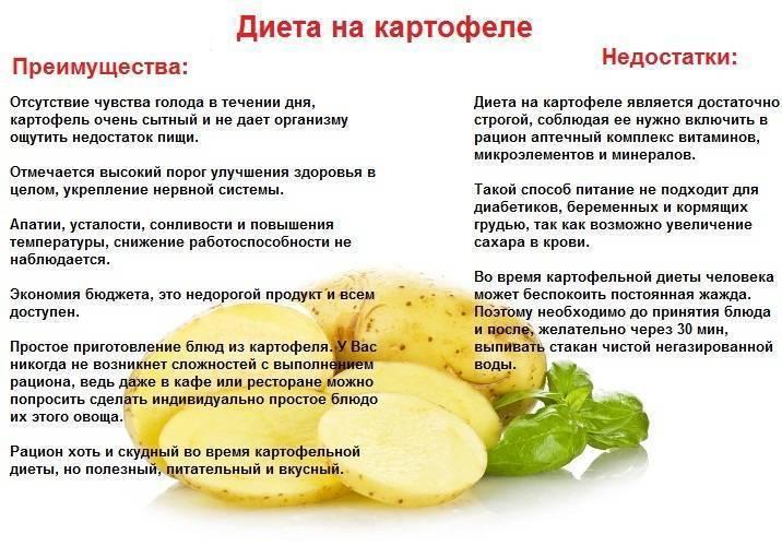 Можно ли кормящей маме жареную картошку при грудном вскармливании новорожденного