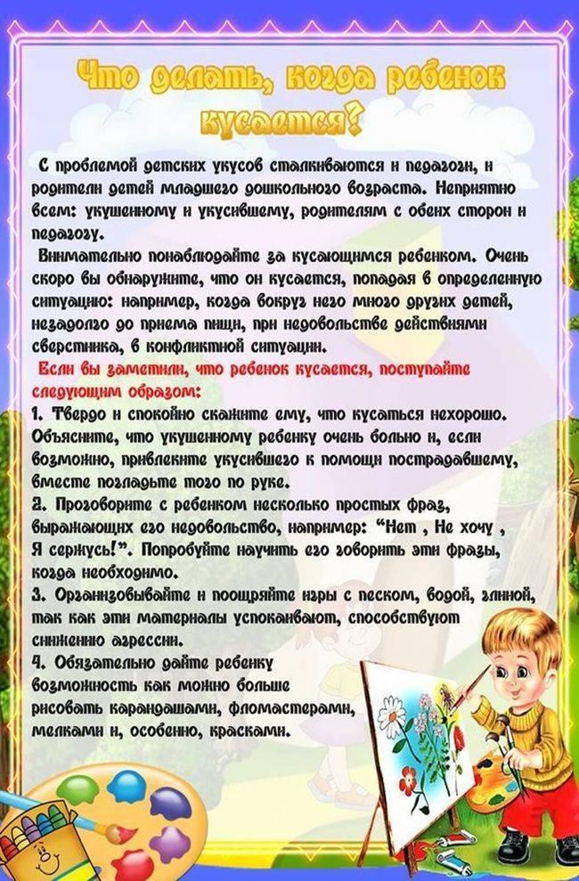 Ребенок дерется в детском саду: что делать, если бьет других малышей, не слушается воспитателя, почему такое бывает дома, каковы советы комаровского и психологов?
