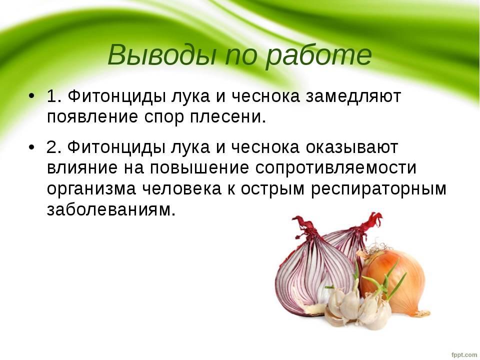 Чеснок детям- энциклопедия детское питание