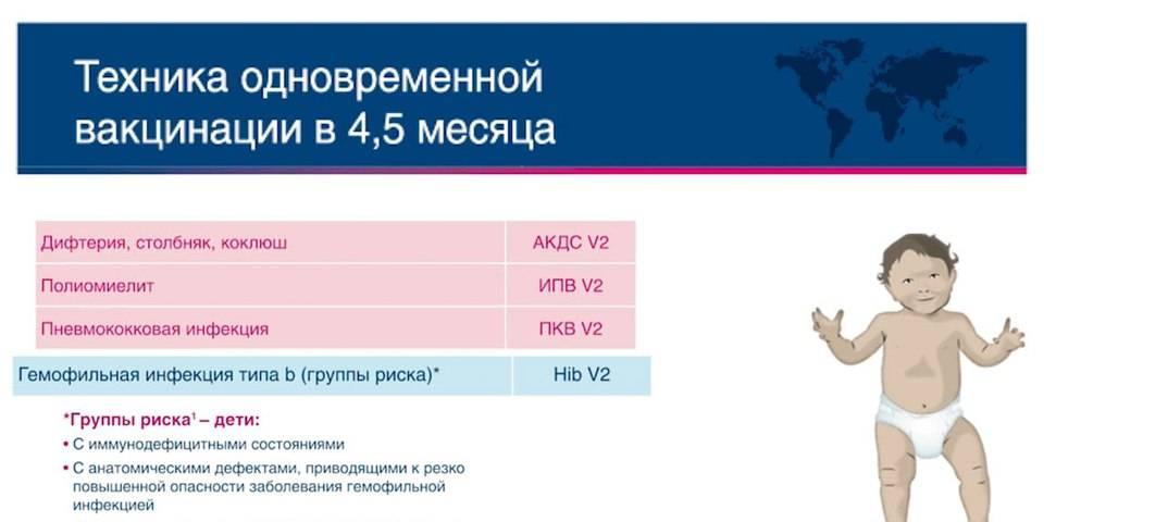 Вакцина полимилекс (polimileks)