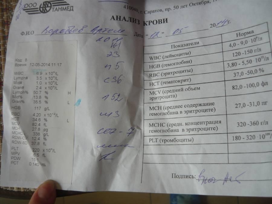 Расшифровка результатов клинического анализа крови