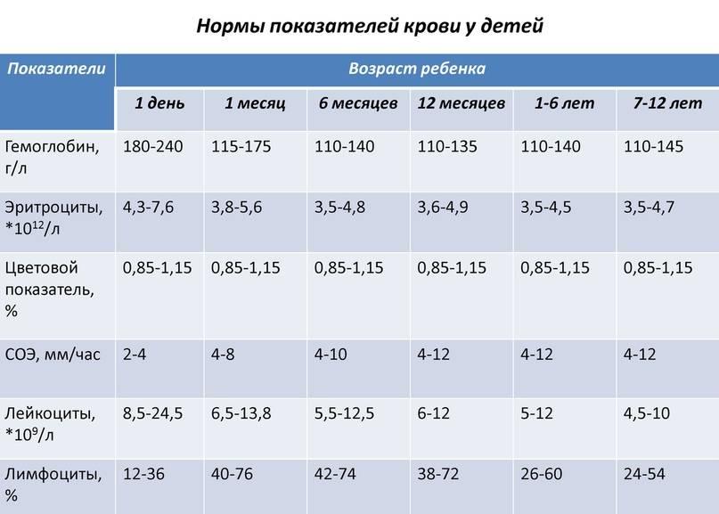 Лейкоциты в крови — норма показателей в таблицах по возрасту у женщин, мужчин и детей, спросиврача