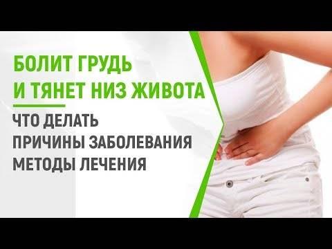 Болит грудь и тянет низ живота: причины, диагностика, возможные заболевания и первые признаки беременности