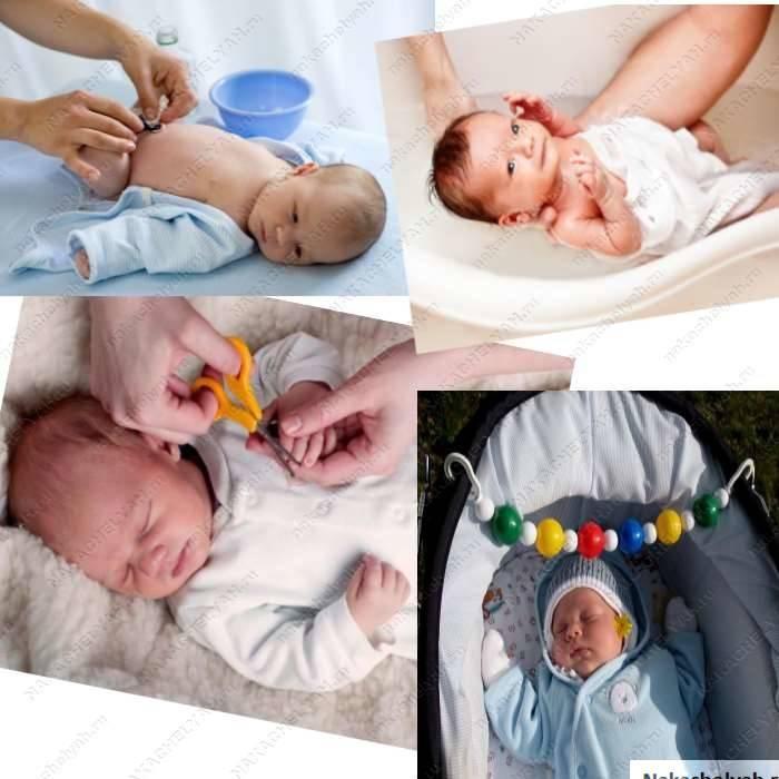 Развитие новорожденного и грудного ребенка   развитие новорожденного