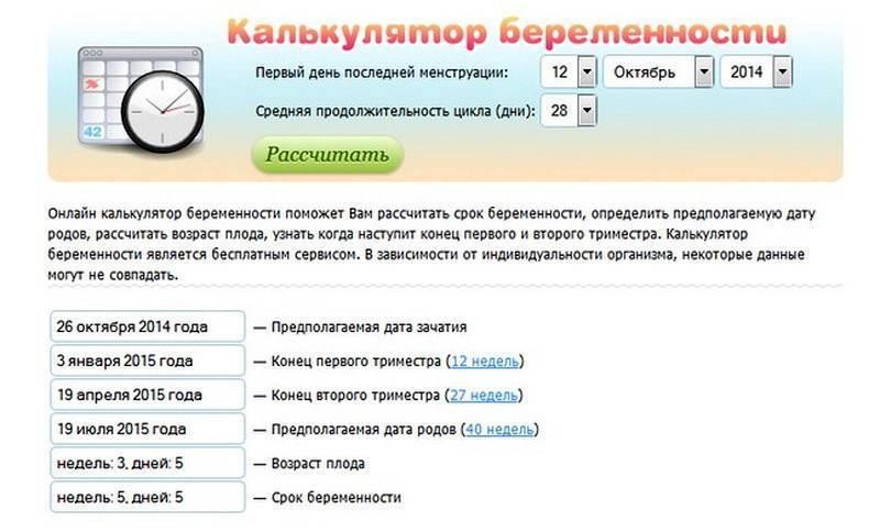 Рассчитать срок беременности: калькулятор сроков, другие способы подсчета, точность