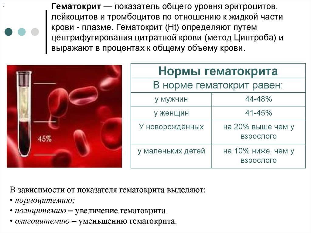 Гематокрит у беременных норма 2 триместр. гематокрит понижен при беременности — что это значит. как лечить пониженный гематокрит в крови во время беременности. каким должно быть питание