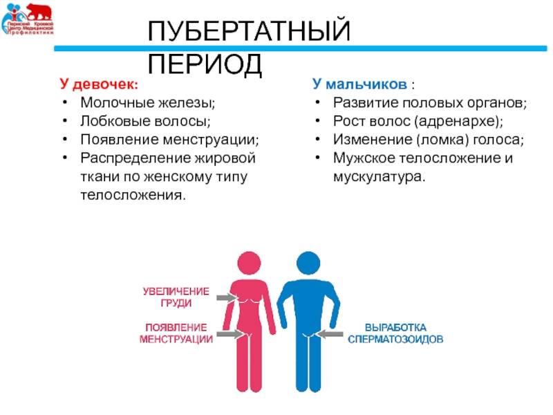 Половое и психосексуальное развитие детей