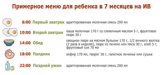 Режим дня ребенка в 6 месяцев: питание, сон, распорядок по часам (таблица)