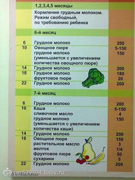 Развитие и питание ребенка в 1 год и 7 месяцев: что должен уметь малыш, как правильно составить для него меню?
