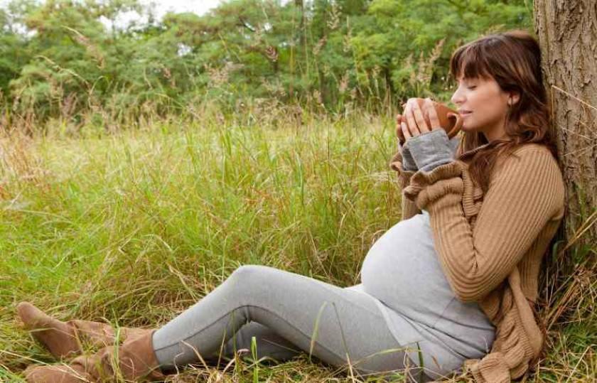 Фильмы про беременных: комедии про беременность