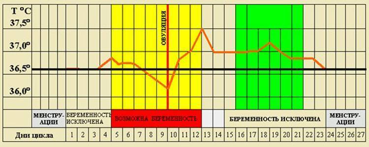 Температурный метод контрацепции - метод базальной температуры