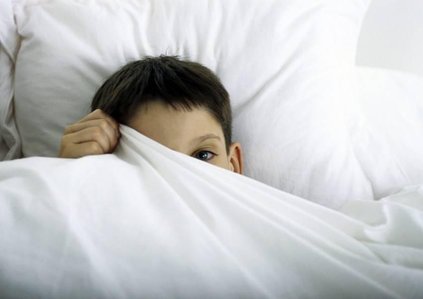 Ночные истерики у ребенка 2 года комаровский