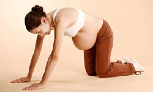 Коленно-локтевое положение при беременности: 6 показаний