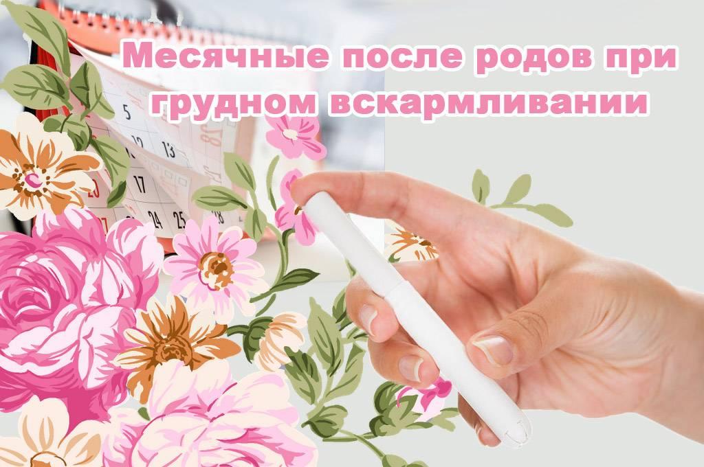 Первые месячные (менструации) после родов - рекомендации врача-гинеколога.
