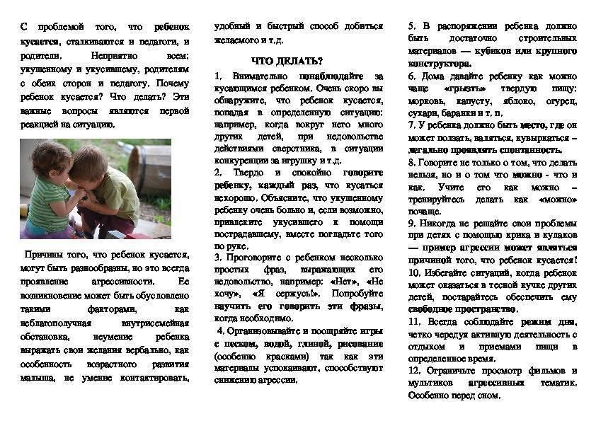 Консультация для родителей и советы доктора комаровского о том, как отучить ребенка кусаться