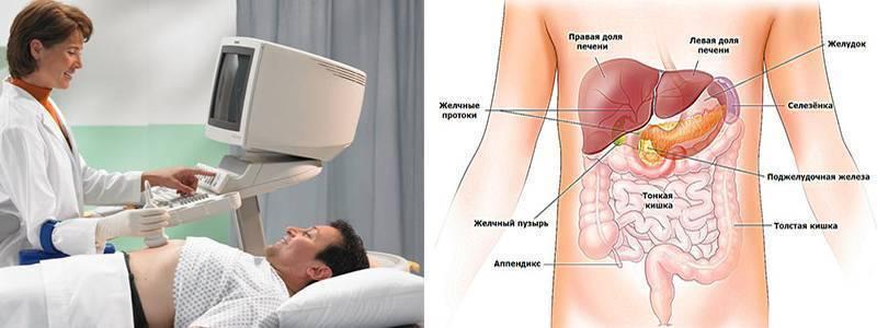 Узи брюшной полости с цдк: описание метода, подготовка, показания и противопоказания к проведению – медси