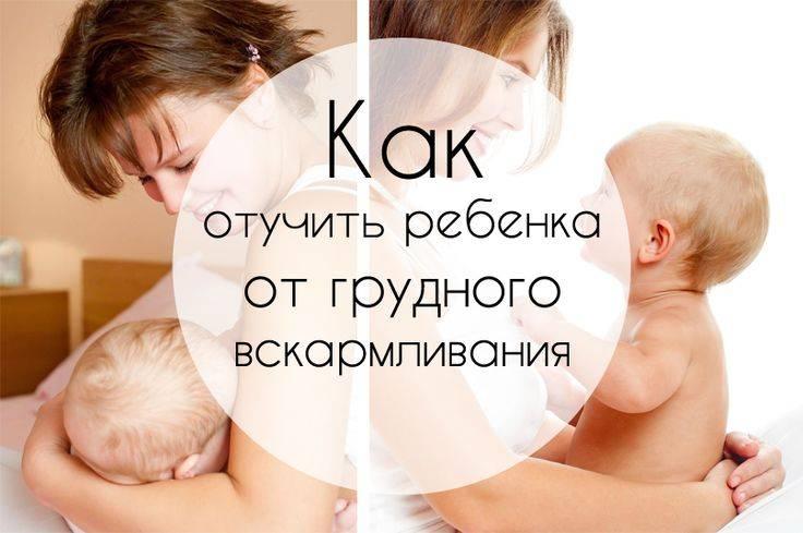 Когда и как отучать ребенка от грудного кормления