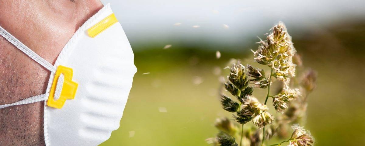 Аллергия на цветы - какие могут быть аллергенами, симптомы и лечение 2021